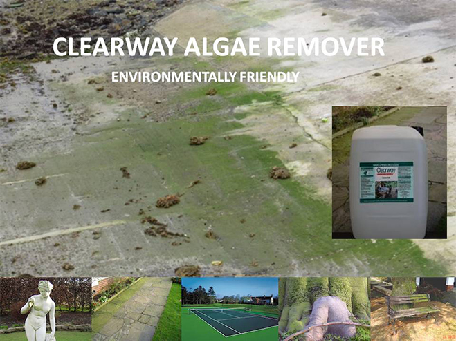 clearway-algae-remover