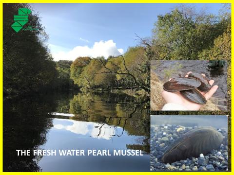 Keep Waterways Clear - Terrastop Premium Silt Fence Ireland